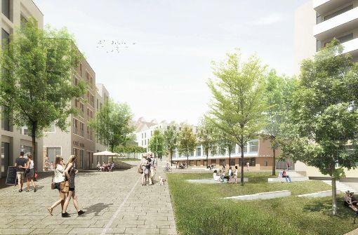 Bezirksbeirat will  Bürgersaal statt mehr Wohnungen
