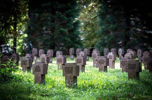 Die Kreuze auf dem Waldfriedhof erinnern an die Opfer des Kriegs Foto: Lichtgut/Achim Zweygarth