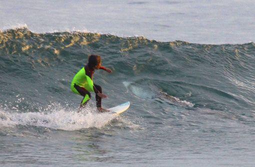 Vater fotografiert Hai unter zehnjährigem Sohn