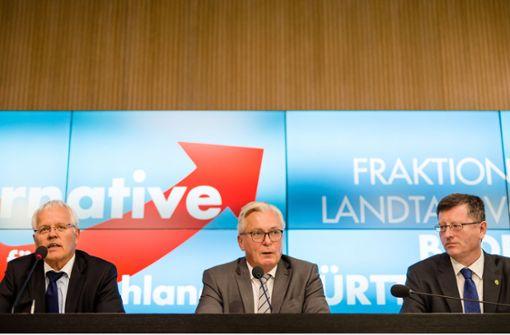 Die AfD hat in Baden-Württemberg etliche Baustellen und ecken damit an. Foto: dpa