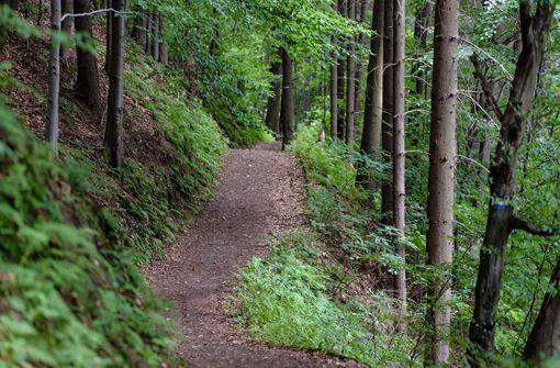 Den besten Grund für ein E-Bike liefert wie bereits erwähnt die steile, hügelige Beschaffenheit des Stuttgarter Raums. Wer kommt schon gerne nassgeschwitzt bei der Arbeit an oder keucht im heißen Sommer den Herweg hoch. Foto: Pixabay