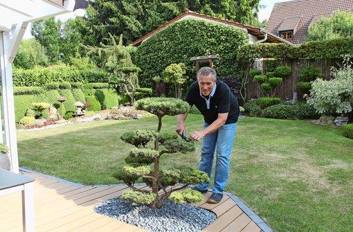 außergewöhnlicher garten: klein-versailles in bergheim - stuttgart, Garten und bauen