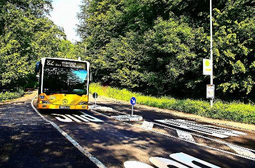 Stadt denkt über mehr Kleinbusse nach