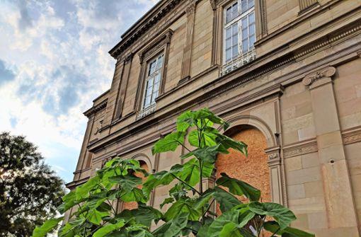 Außen an der Villa wuchern die Pflanzen in die Höhe. Foto: Jürgen Brand