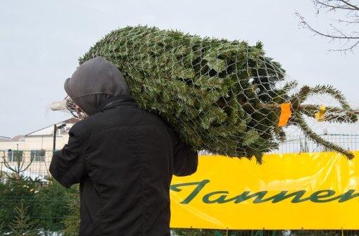 Christbäume, die aus Plantagen stammen, sind häufig mit Pestiziden belastet Foto: dpa