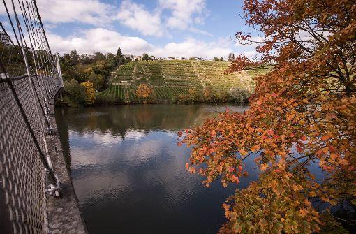 Ein Spaziergang entlang des Neckars lohnt sich im Herbst besonders. Foto: Lichtgut/Max Kovalenko