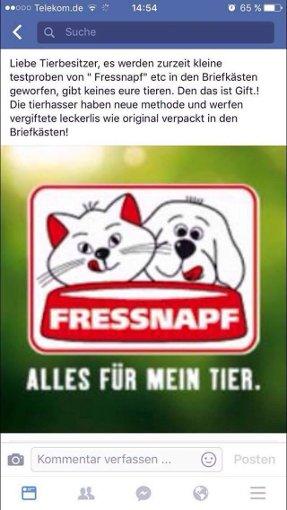 Foto: Screenshot Stefi Schönfeld