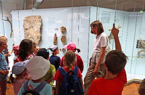 Eine Reise zu den Steinzeitmenschen
