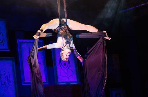 Puppenspiele, Artistik und Akrobatik