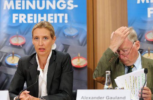 Alice Weidel und Alexander Gauland führen die AfD in den Bundestagswahlkampf. Zumindest Weidel ist nicht glücklich über die Ankündigung Meuthens, gegen Frauke Petry anzutreten. Allerdings sind Weidel und Meuthen nicht gerade Freunde.   Foto: dpa