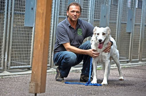 Zum Tierglück fehlen  390000 Euro