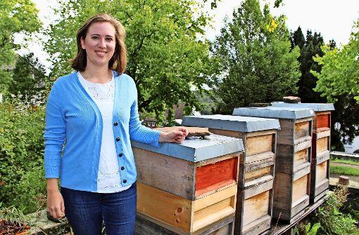 Schwäbische Bienen helfen in Indien