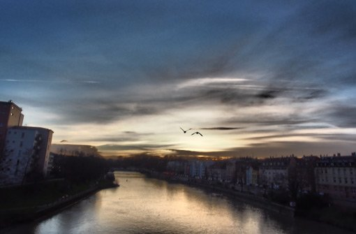 Unterwegs an Stuttgarts Ufern