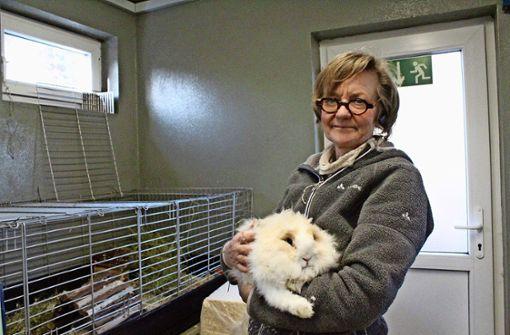 Antje Päglow hält ein Angora-Kaninchen, deren Fell viel Pflege braucht. Foto: Denise Kupka