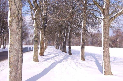 Winterliches Weiß in Stadt und Land