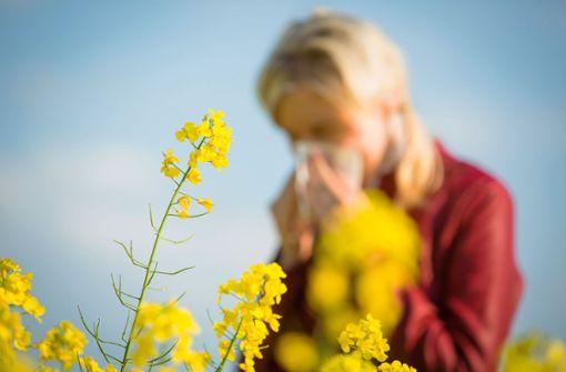 Pleiten, Pech und Pollen