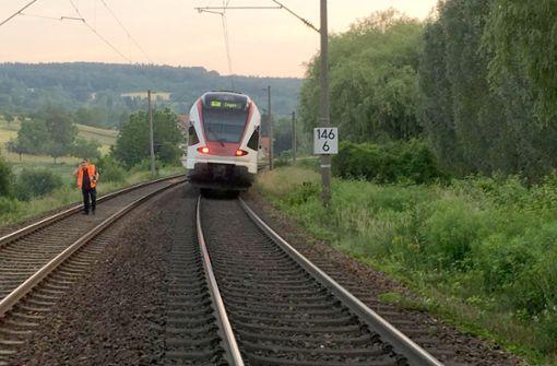 Eine Schafherde stand frühmorgens dicht gedrängt auf dem Bahndamm, als der Zug sie erfasste. Foto: Bundespolizeiinspektion Konstanz