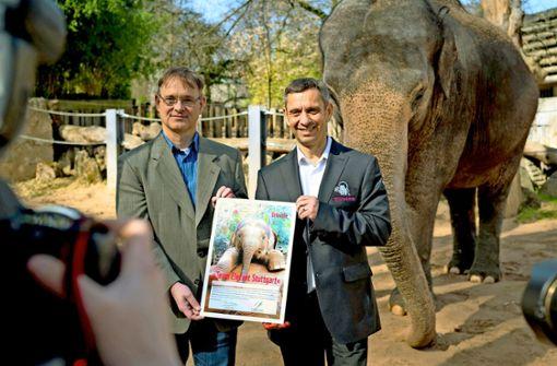 Die Elefantenwelt soll wachsen