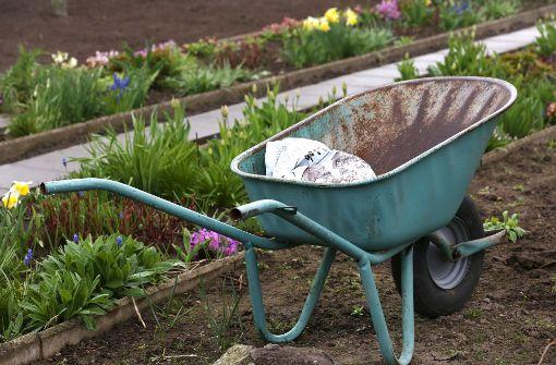 Sieben  Gartentipps für alle Wetterlagen