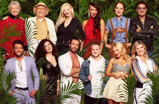 Auch 2019 schickt RTL zwölf mehr oder weniger bekannte Persönlichkeiten in den australischen Dschungel. In unserer Bildergalerie zeigen wir, woher Sie die Promis kennen (könnten). Foto: MG RTL D / Arya Shirazi