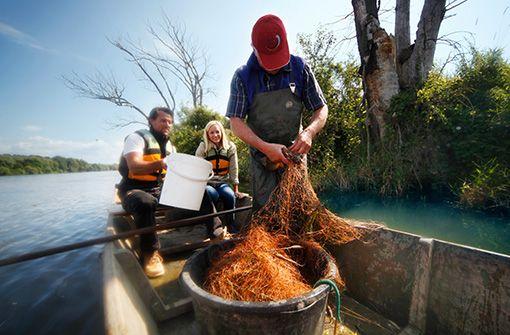Fischen im Abens Fluss  Foto: Tourist-Information Bad Gögging