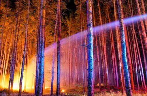 Rund 300 Einsatzkräfte bekämpfen den Waldbrand südwestlich von Berlin.  Foto: dpa-Zentralbild