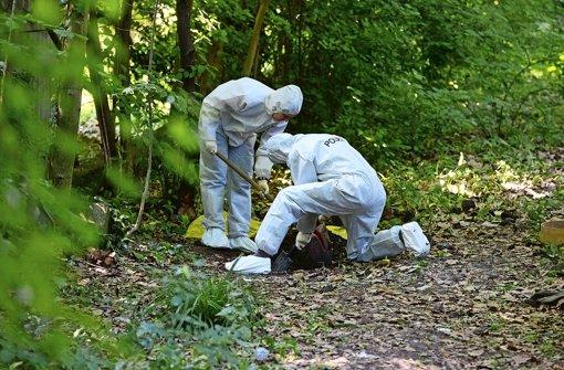Wo die Leichen gefunden wurden: Spurensicherung Anfang Juni im Schlossgarten Foto: dpa