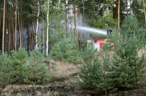 Großer Waldbrand hält Einsatzkräfte in Atem