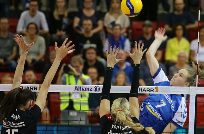 Volleyball – Allianz MTV Stuttgart: Gut eingekauft