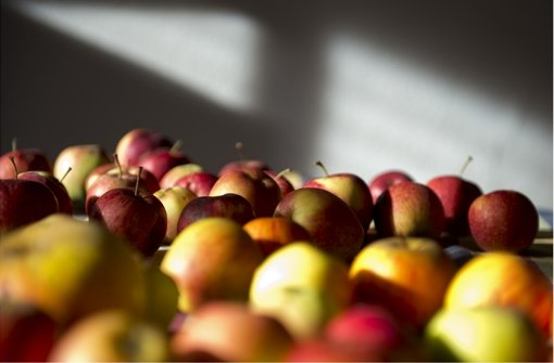 Herbstäpfel Foto: dapd