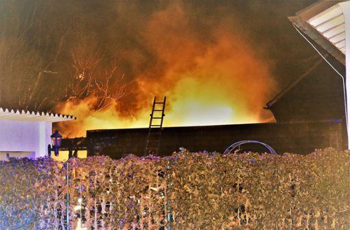 Dort standen ein Gartenhaus und ein Schuppen in Flammen.  Foto: SDMG