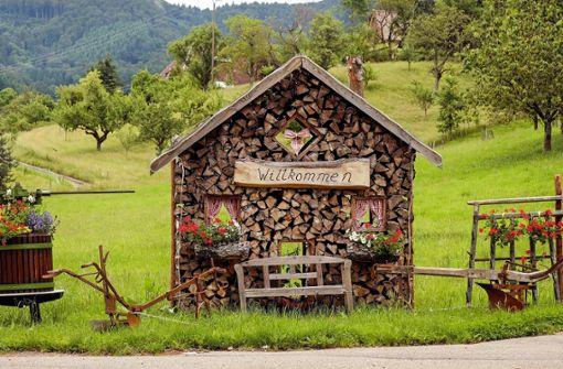 Großartiges Fahrradabenteuer im Schwarzwald