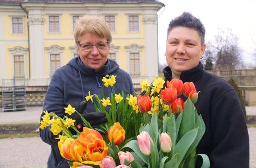 Die BlüBa-Gärtnerinnen Regina Wyrich (links) und Bianca Allin halten den Frühling in den Händen. Foto: Blüba