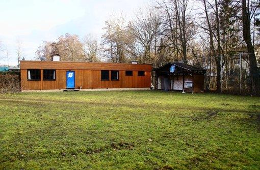 Das dem Kindergarten Pforzheimer Straße 245   fehlt, hat der Ski-Club ausreichend: Rasenfläche. Tagsüber können die Mädchen und Buben künftig dort herumtollen oder am angrenzenden Lindenbach spielen. Foto: Leonie Hemminger