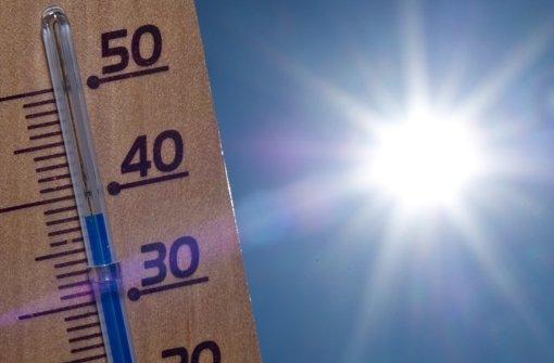 Sieben Tipps für die heißen Tage