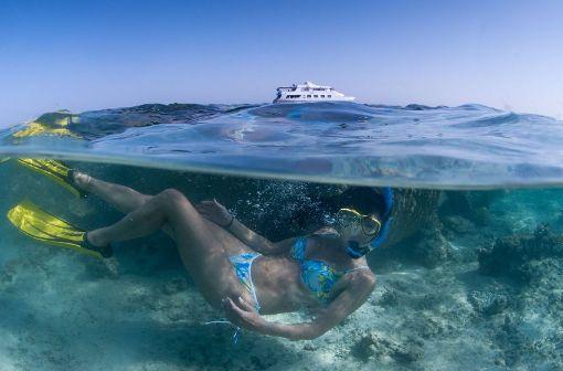 Wer tauchen geht, kann für wenig Geld Unterwasserkameras, wie zum Beispiel der Olympus Tough TG-4, bekommen.  Foto: shutterstock/Fiona Ayerst
