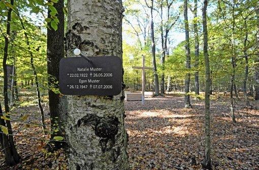 Ein Musterschild ist im Friedwald im Biosphärenreservat bei Dessau-Roßlau an einem Baum befestigt Foto: dpa