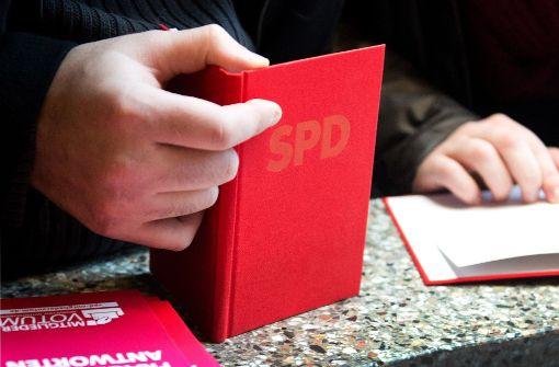 SPD und CDU verlieren, AfD wächst um 40 Prozent