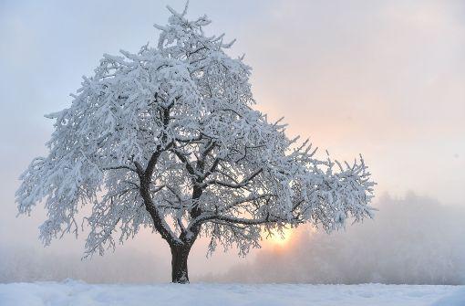 Am Samstag wird es wieder kalt. Foto: dpa