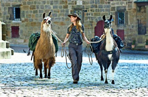 Lamas machen sich auf den Klimapilgerweg