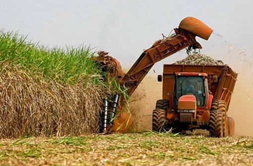 Industrielle Zuckerrohrernte in Brasilien. Der einstige Zuckerlieferant wird heute oft zu Biosprit verarbeitet. Foto: dapd