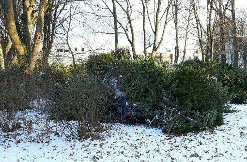 Auto unter Bäumen begraben