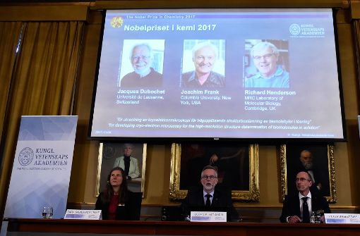 Chemie-Nobelpreis für Kryo-Elektronenmikroskopie verliehen