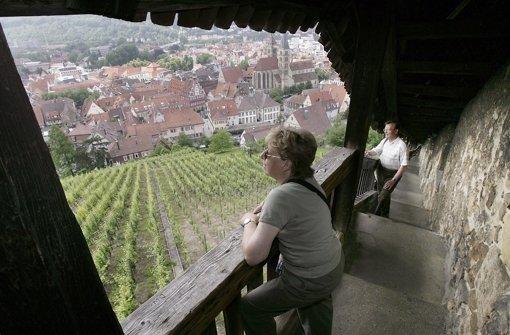 Wiesen, Wald und Wein