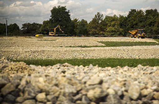 Auf dem Killesberg regt sich Unmut, weil eine Wiese für eine Eidechsen-Umsiedlung in eine Steinlandschaft verwandelt wird. Foto: Lichtgut/Leif Piechowski