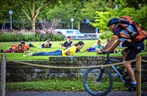 Yoga im Schlossgarten II Foto: Lichtgut/Julian Rettig
