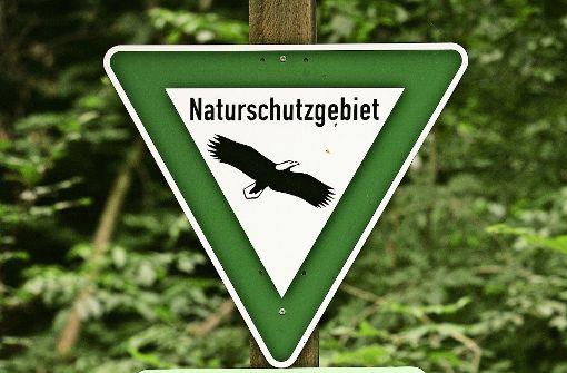 Der Vicinalweg führt mitten durch das Naturschutzgebiet Greutterwald. Foto: Archiv Achim Zweygarth