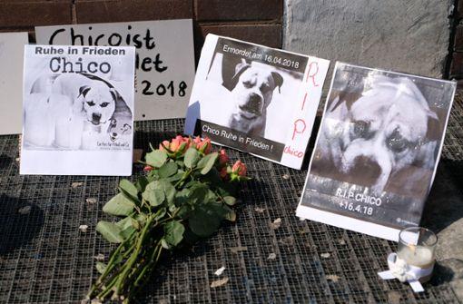 """Mahnwache für getöteten Hund """"Chico"""""""