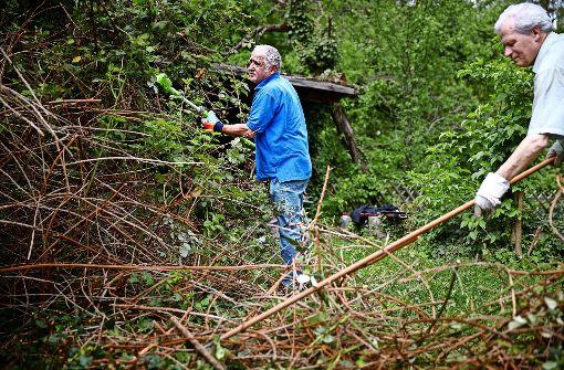 Elektriker Waiblingen projekt der freiwilligen agentur waiblingen der mann