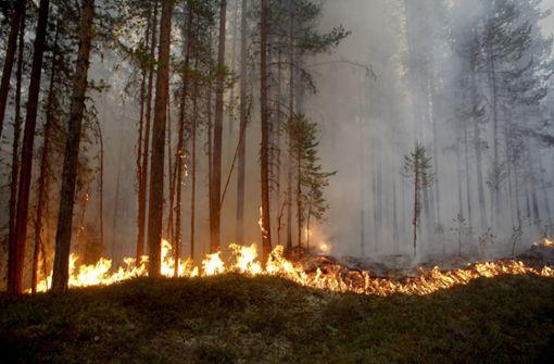 Militär kämpft mit Bomben gegen Waldbrand